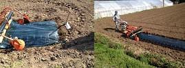 農業事業3