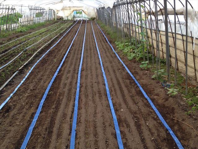 農業事業6_R